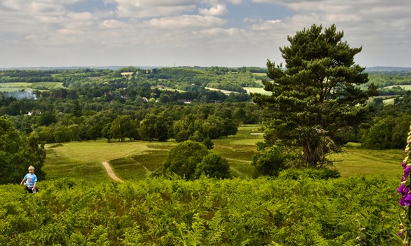 High Weald Landscape Trail ...find out more