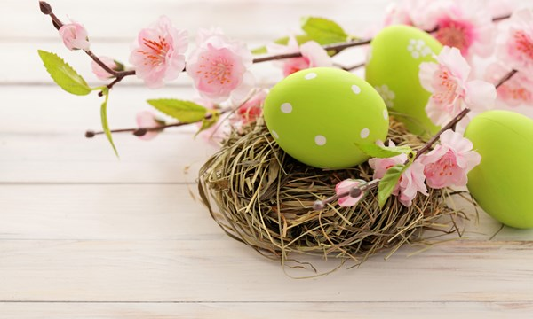 Easter eggs, nest and flowers